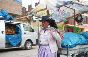 Fotografía del 29 de noviembre del 2016 de una pobladora de la ciudad andina de Acobamba en la región de Huancavelica (Perú). EFE